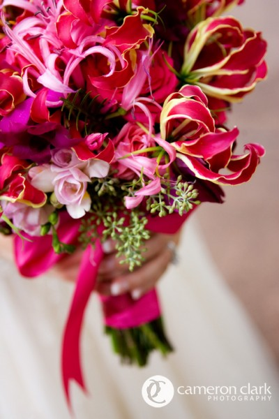 Exotic fuchsias, pinks and magenta, Image by Cameron + Kelly Studios